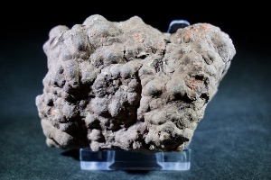 Dinosaur Coprolite, from North West, USA (No.6)