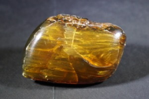 Baltic Amber (No.10)