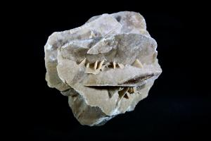 Gypsum Desert Rose (No.109)
