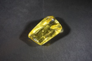 Amber, from Dominican Republic Central America (No.9)