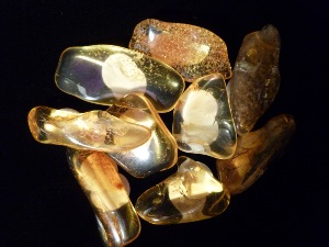Amber - Baltic - Tumbled