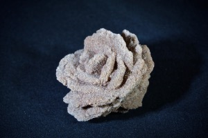 Baryte Rose, from Arkansas, USA (No.617)