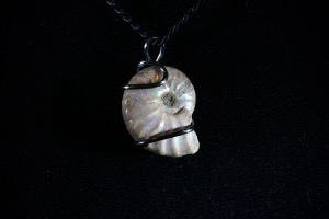 Cleoniceras Ammonite Hand Wired Pendant No.840)