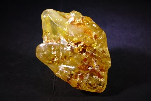 Amber, from The Dominican Republic (No.38)