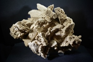 Barite Desert Rose, from Mexico (No.45)