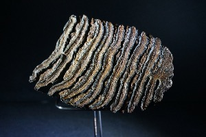 Woolly Mammoth Tooth (with stand), from North Sea Area, Ice Age (No.139)