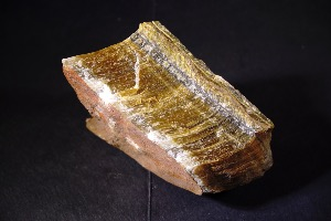 Rough Golden Tiger Eye (No.44)